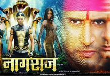 Poster Out 'Nagraj' Between Two Nages, Yash Kumar sees the new poster of the movie