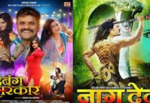 Two films of Khesarilal will be shot at the box office again